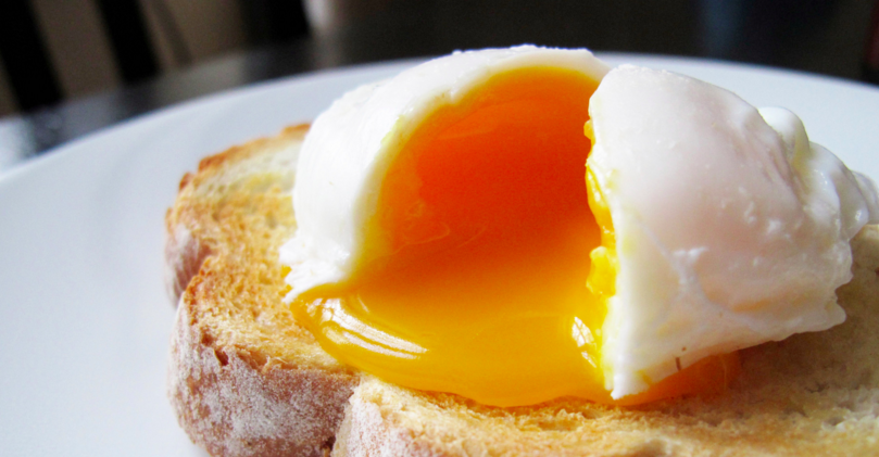 egg hleypt